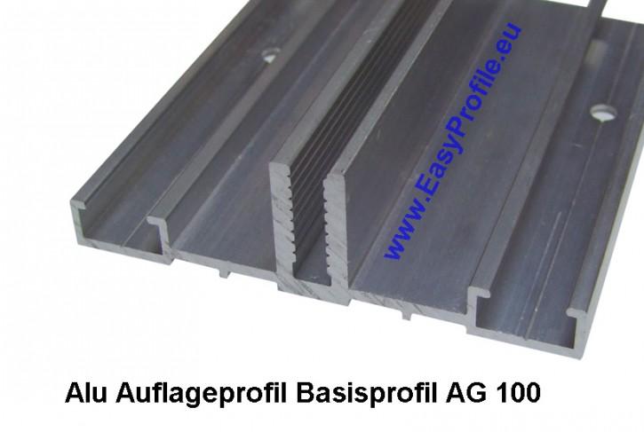 Basisprofil AG.100.e Glasauflageprofil Alu fuer Wintergarten und Fassade 100