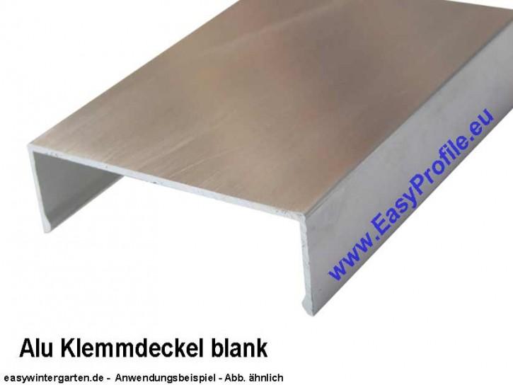 Deckprofil Alu blank A.60-20.e