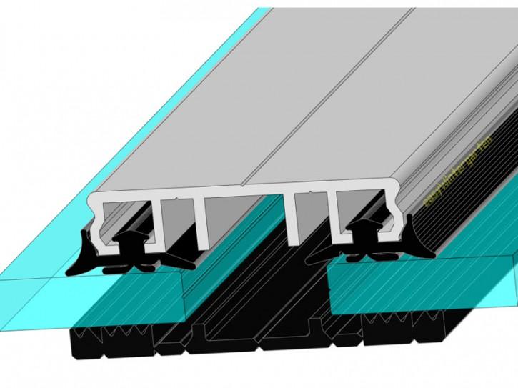 Mittelprofile Glasklemmprofile für VSG Glas, für 60 mm Balken
